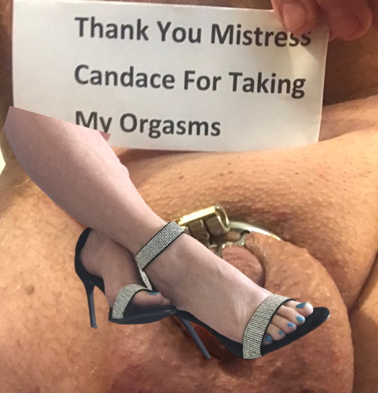 FinDom Mistress Candace takes your money